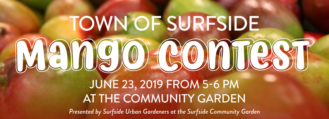 Town of Surfside Mango Contest