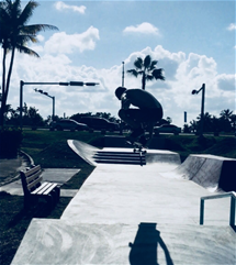Skate Park and Pump Track